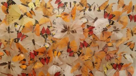 ButterfliesinFlightNottinghillyummymummy
