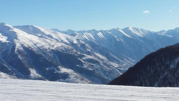 AlpsNHYM2014