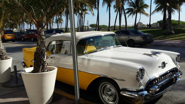 Miami50sCarNHYM