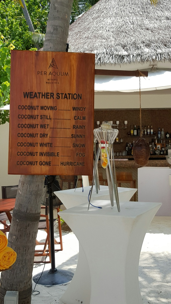 CoconutStation&BarNIYAMANHYM
