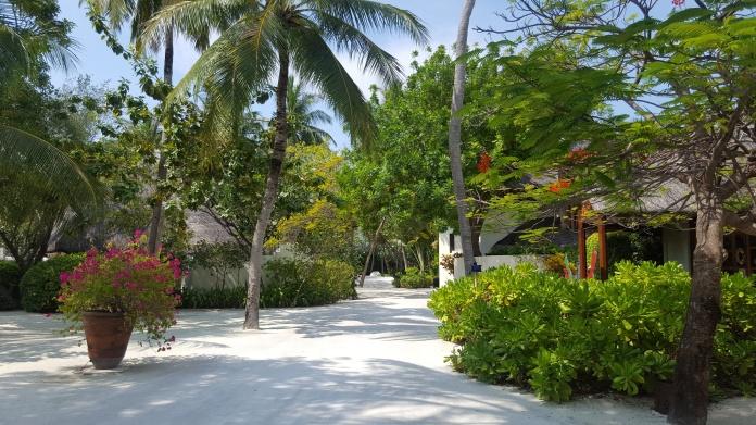 MaldivesFourSeasonsGroundsNHYM